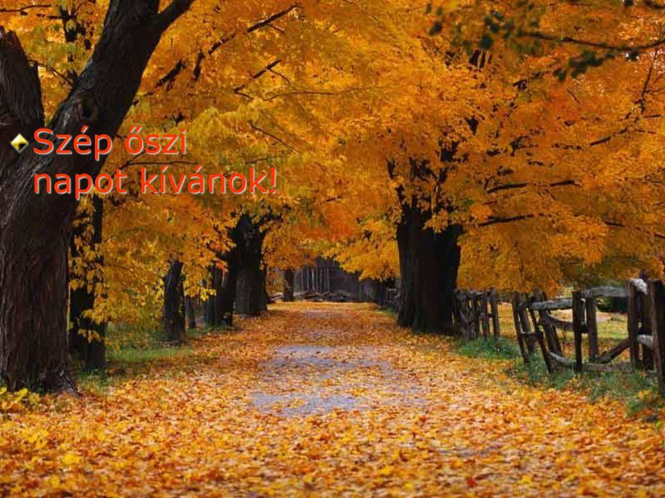 Szép őszi napot kívánok!