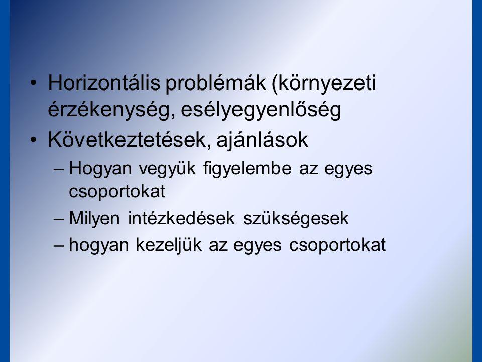 Horizontális problémák (környezeti érzékenység, esélyegyenlőség Következtetések, ajánlások –Hogyan vegyük figyelembe az egyes csoportokat –Milyen inté