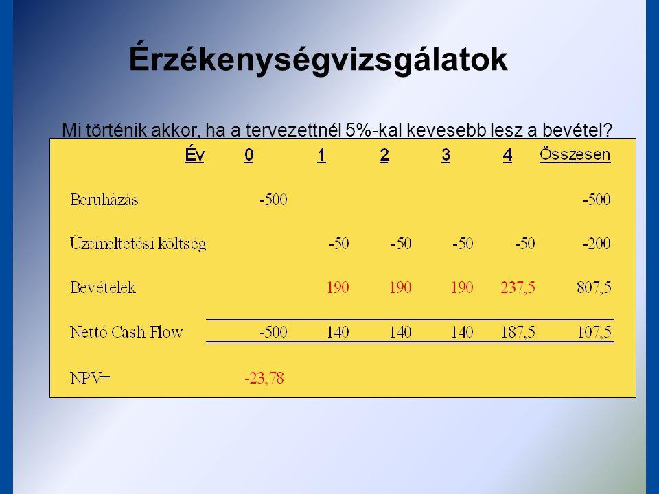Érzékenységvizsgálatok Mi történik akkor, ha az első évben csak 50% lesz a kapacitás- kihasználás?