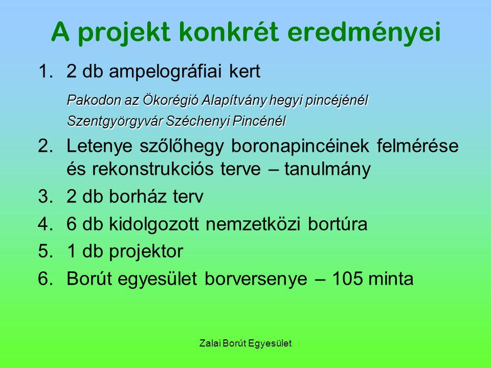 Zalai Borút Egyesület A projekt konkrét eredményei 1.2 db ampelográfiai kert Pakodon az Ökorégió Alapítvány hegyi pincéjénél Szentgyörgyvár Széchenyi