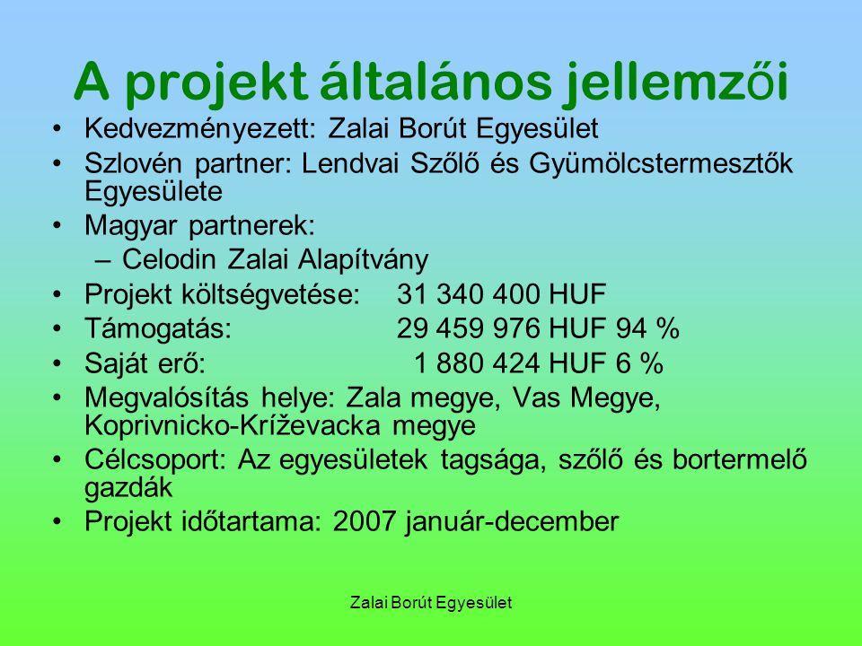 Zalai Borút Egyesület A projekt általános jellemz ő i Kedvezményezett: Zalai Borút Egyesület Szlovén partner: Lendvai Szőlő és Gyümölcstermesztők Egyesülete Magyar partnerek: –Celodin Zalai Alapítvány Projekt költségvetése: 31 340 400 HUF Támogatás: 29 459 976 HUF 94 % Saját erő: 1 880 424 HUF 6 % Megvalósítás helye: Zala megye, Vas Megye, Koprivnicko-Kríževacka megye Célcsoport: Az egyesületek tagsága, szőlő és bortermelő gazdák Projekt időtartama: 2007 január-december