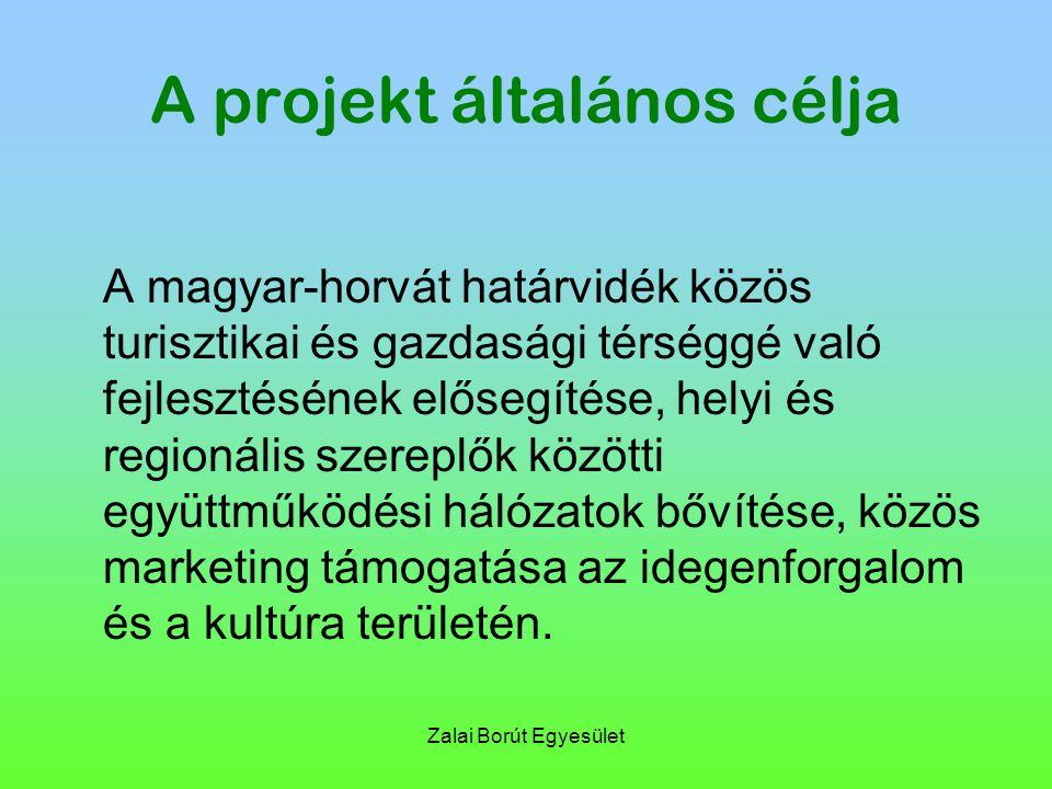 Zalai Borút Egyesület A projekt általános célja A magyar-horvát határvidék közös turisztikai és gazdasági térséggé való fejlesztésének elősegítése, helyi és regionális szereplők közötti együttműködési hálózatok bővítése, közös marketing támogatása az idegenforgalom és a kultúra területén.