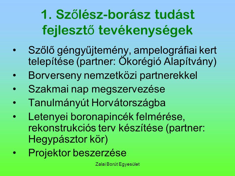 Zalai Borút Egyesület 1. Sz ő lész-borász tudást fejleszt ő tevékenységek Szőlő géngyűjtemény, ampelográfiai kert telepítése (partner: Ökorégió Alapít
