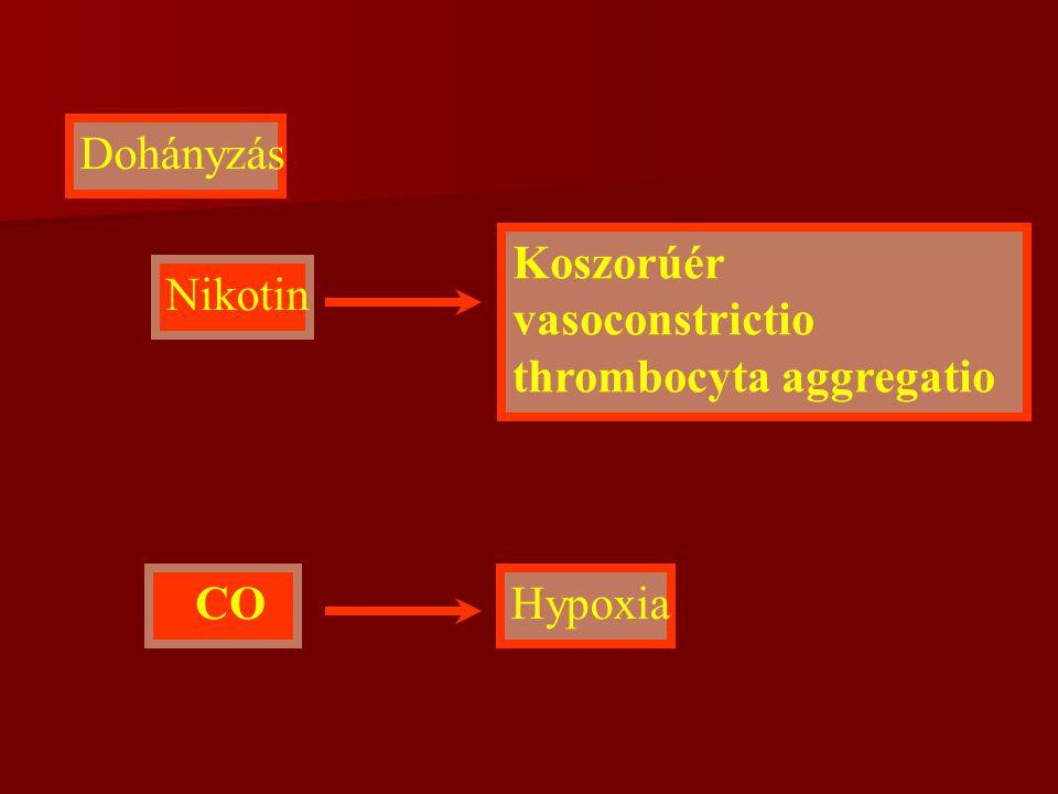 Dohányzás Nikotin CO Koszorúér vasoconstrictio thrombocyta aggregatio Hypoxia
