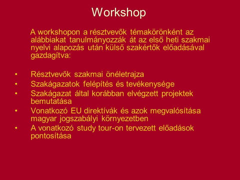 Workshop A workshopon a résztvevők témakörönként az alábbiakat tanulmányozzák át az első heti szakmai nyelvi alapozás után külső szakértők előadásával gazdagítva: Résztvevők szakmai önéletrajza Szakágazatok felépítés és tevékenysége Szakágazat által korábban elvégzett projektek bemutatása Vonatkozó EU direktívák és azok megvalósítása magyar jogszabályi környezetben A vonatkozó study tour-on tervezett előadások pontosítása