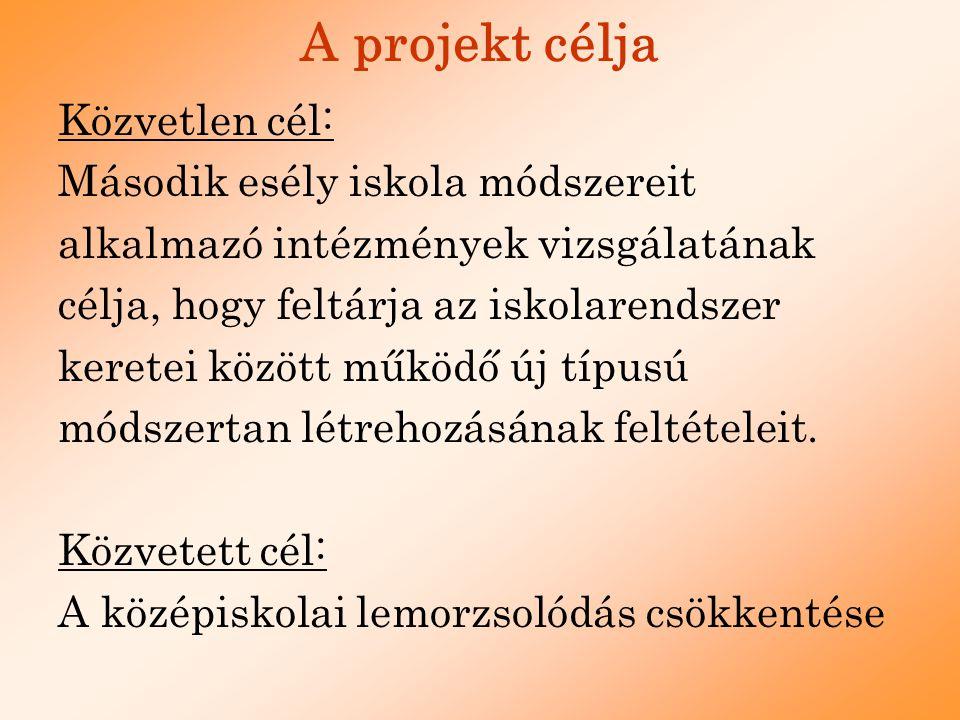 A projekt célcsoportja ELSŐDLEGES: 16 és 25 év közötti középfokú oktatási rendszerből lemorzsolódott, szakképzetlen, munkanélküli fiatalok MÁSODLAGOS: pedagógusok, tanárképzők