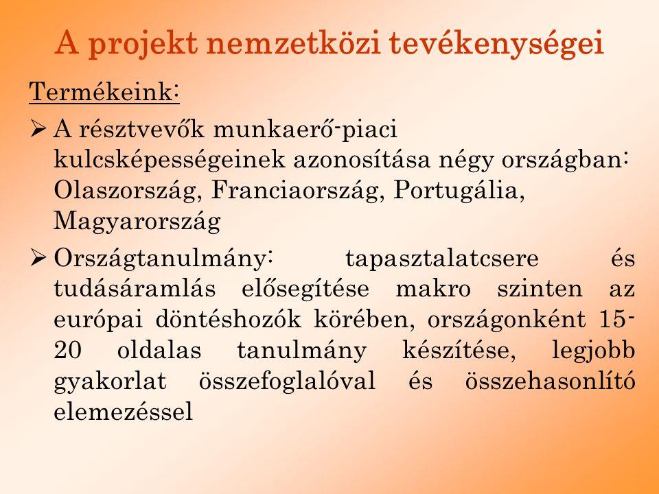 A projekt nemzetközi tevékenységei  Legjobb Gyakorlatok Kiadvány elkészítése, a lemorzsolódott fiatalok munkaerő-piaci integrációjáról: 8 esettanulmány készítése civil szervezetek, iskolák, egyéb oktatással foglalkozó intézményeknél  A szakiskolai tanárok bevonása, tanárok tapasztalatcseréje Hollandia 2006.