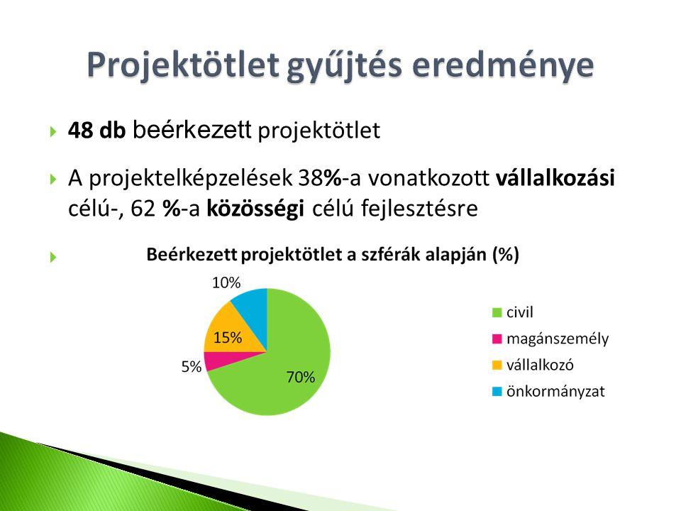  48 db beérkezett projektötlet  A projektelképzelések 38%-a vonatkozott vállalkozási célú-, 62 %-a közösségi célú fejlesztésre 