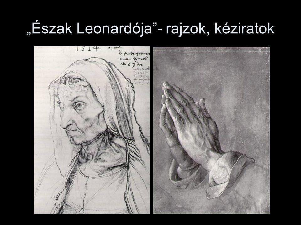 """""""Észak Leonardója""""- rajzok, kéziratok"""
