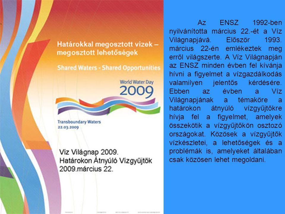 Az ENSZ 1992-ben nyilvánította március 22.-ét a Víz Világnapjává. Először 1993. március 22-én emlékeztek meg erről világszerte. A Víz Világnapján az E