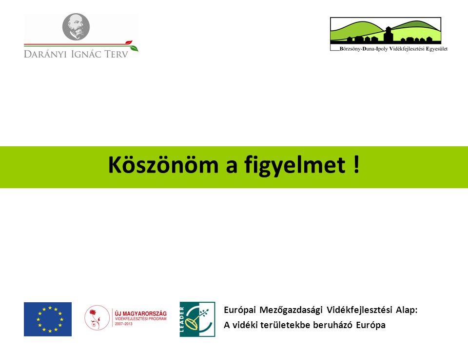 Köszönöm a figyelmet ! Európai Mezőgazdasági Vidékfejlesztési Alap: A vidéki területekbe beruházó Európa