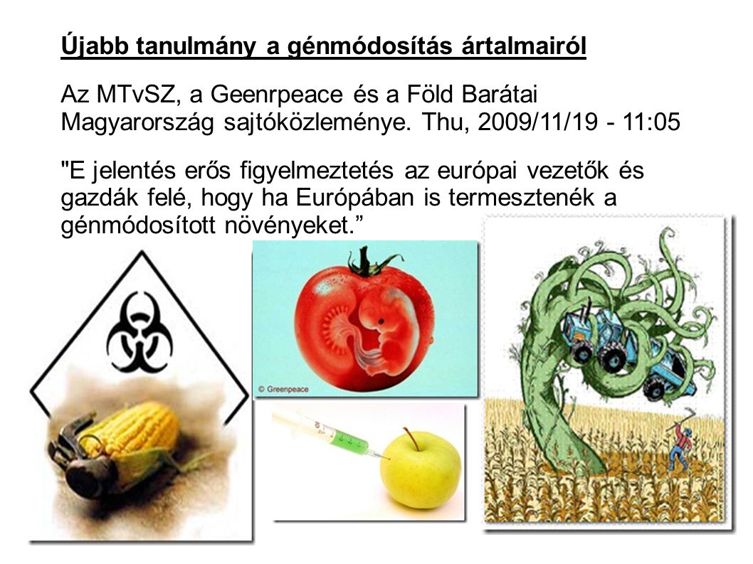 Újabb tanulmány a génmódosítás ártalmairól Az MTvSZ, a Geenrpeace és a Föld Barátai Magyarország sajtóközleménye.