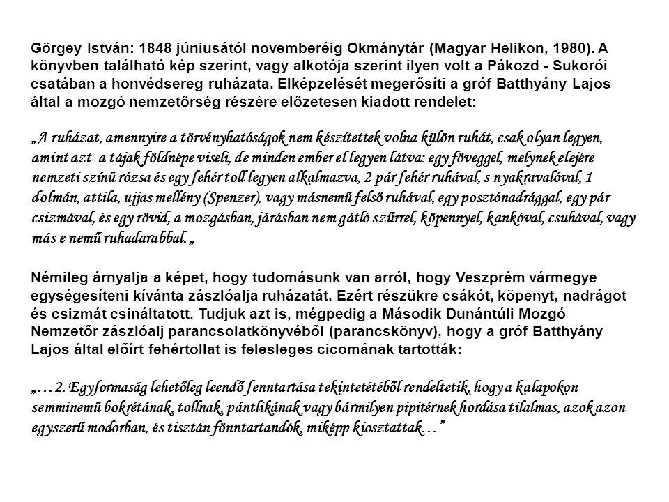 Görgey István: 1848 júniusától novemberéig Okmánytár (Magyar Helikon, 1980). A könyvben található kép szerint, vagy alkotója szerint ilyen volt a Páko