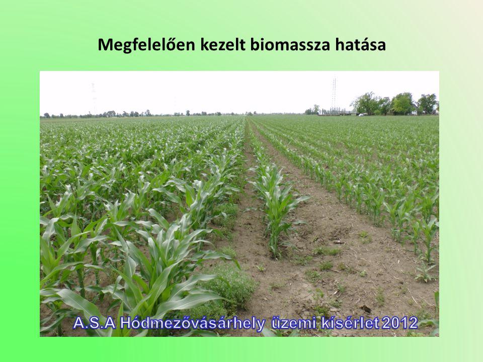 Megfelelően kezelt biomassza hatása
