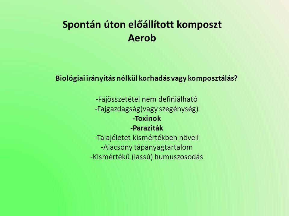 Spontán úton előállított komposzt Aerob Biológiai irányítás nélkül korhadás vagy komposztálás? -Fajösszetétel nem definiálható -Fajgazdagság(vagy szeg