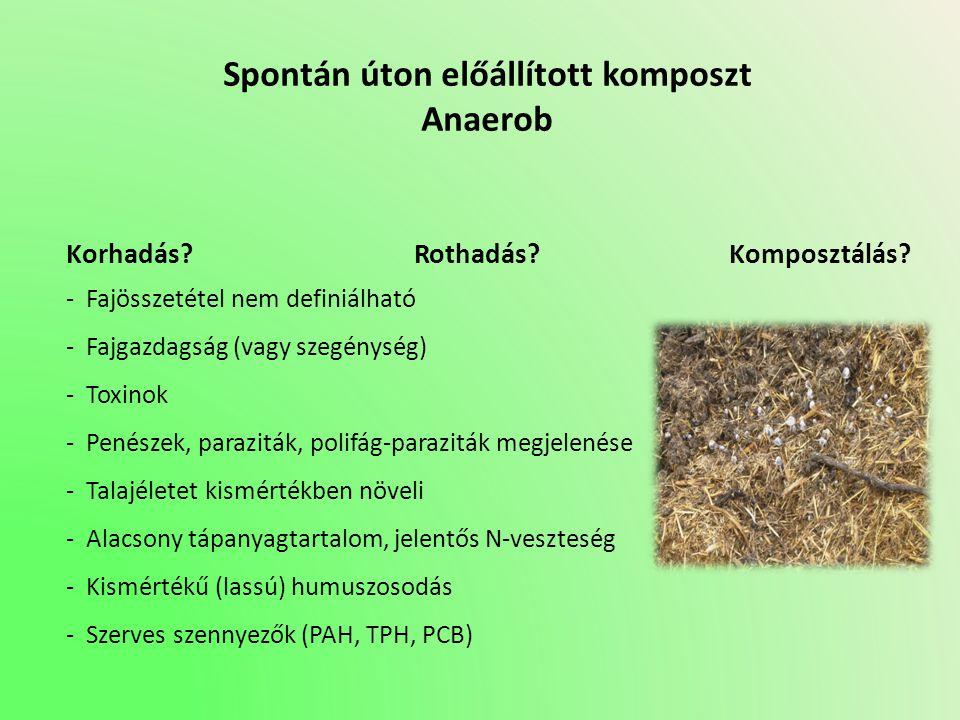 Spontán úton előállított komposzt Anaerob Korhadás? Rothadás? Komposztálás? - Fajösszetétel nem definiálható - Fajgazdagság (vagy szegénység) - Toxino
