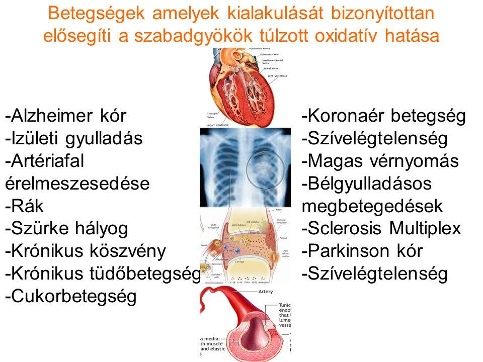 -Alzheimer kór -Izületi gyulladás -Artériafal érelmeszesedése -Rák -Szürke hályog -Krónikus köszvény -Krónikus tüdőbetegség -Cukorbetegség -Koronaér betegség -Szívelégtelenség -Magas vérnyomás -Bélgyulladásos megbetegedések -Sclerosis Multiplex -Parkinson kór -Szívelégtelenség Betegségek amelyek kialakulását bizonyítottan elősegíti a szabadgyökök túlzott oxidatív hatása