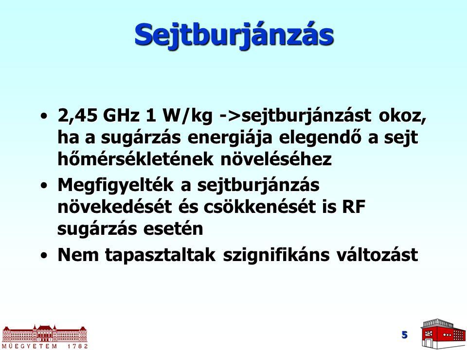 5 Sejtburjánzás 2,45 GHz 1 W/kg ->sejtburjánzást okoz, ha a sugárzás energiája elegendő a sejt hőmérsékletének növeléséhez2,45 GHz 1 W/kg ->sejtburján