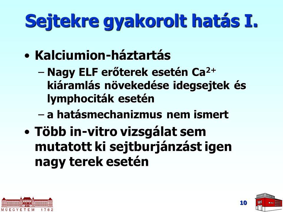 10 Sejtekre gyakorolt hatás I. Kalciumion-háztartásKalciumion-háztartás –Nagy ELF erőterek esetén Ca 2+ kiáramlás növekedése idegsejtek és lymphociták