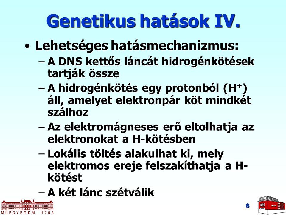 8 Genetikus hatások IV. Lehetséges hatásmechanizmus:Lehetséges hatásmechanizmus: –A DNS kettős láncát hidrogénkötések tartják össze –A hidrogénkötés e