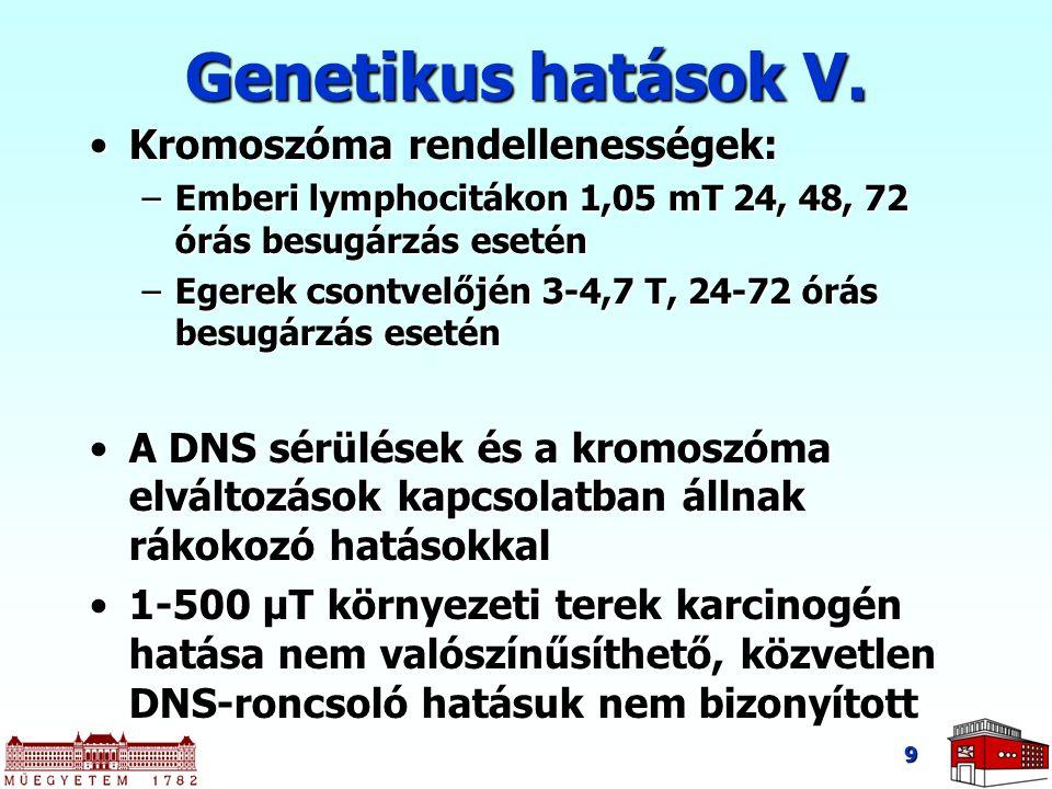 9 Genetikus hatások V. Kromoszóma rendellenességek:Kromoszóma rendellenességek: –Emberi lymphocitákon 1,05 mT 24, 48, 72 órás besugárzás esetén –Egere