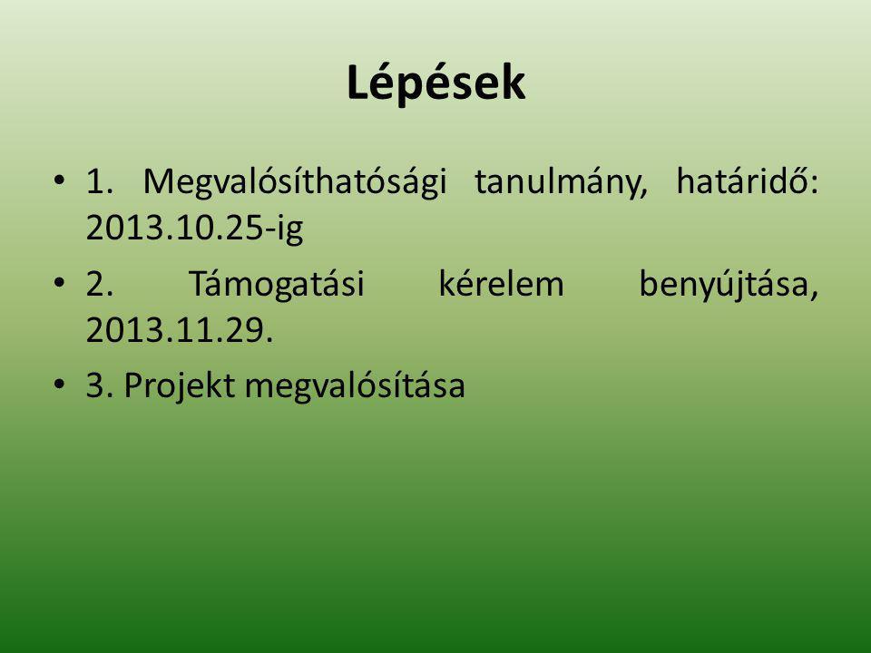 Lépések 1. Megvalósíthatósági tanulmány, határidő: 2013.10.25-ig 2. Támogatási kérelem benyújtása, 2013.11.29. 3. Projekt megvalósítása