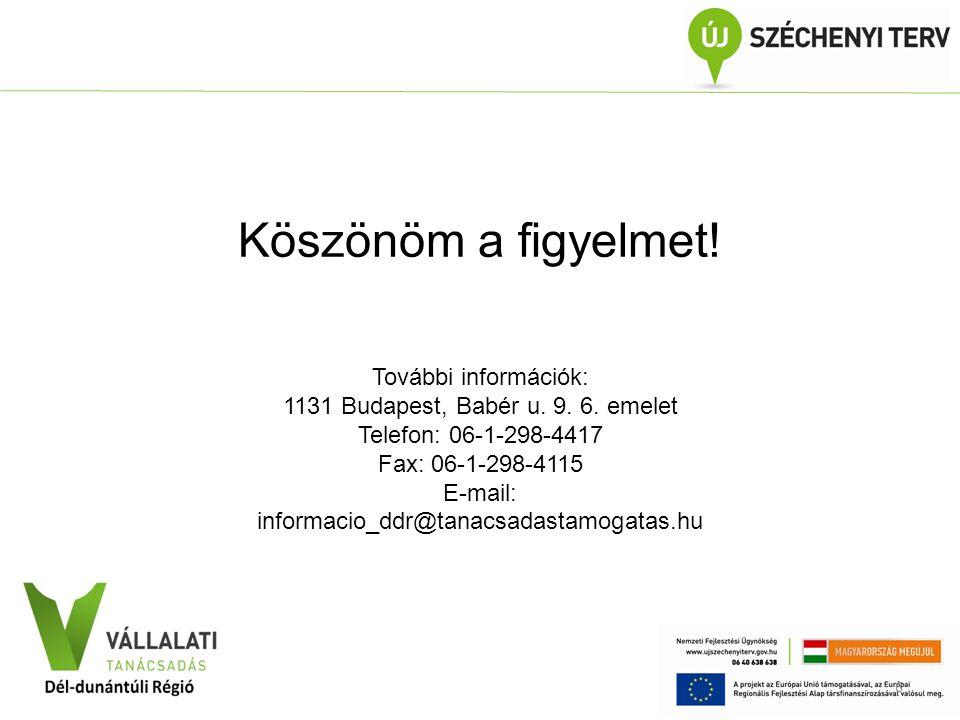 VÁLLALATI TANÁCSADÁS Közép-Dunántúli Régió Köszönöm a figyelmet! További információk: 1131 Budapest, Babér u. 9. 6. emelet Telefon: 06-1-298-4417 Fax: