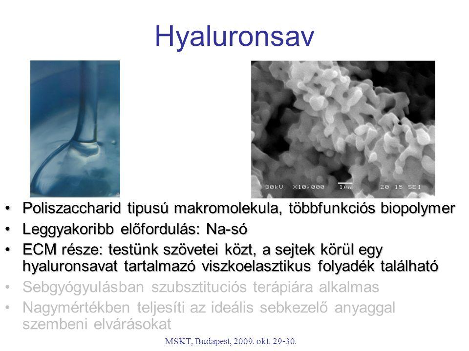 MSKT, Budapest, 2009. okt. 29-30. Hyaluronsav Poliszaccharid tipusú makromolekula, többfunkciós biopolymerPoliszaccharid tipusú makromolekula, többfun