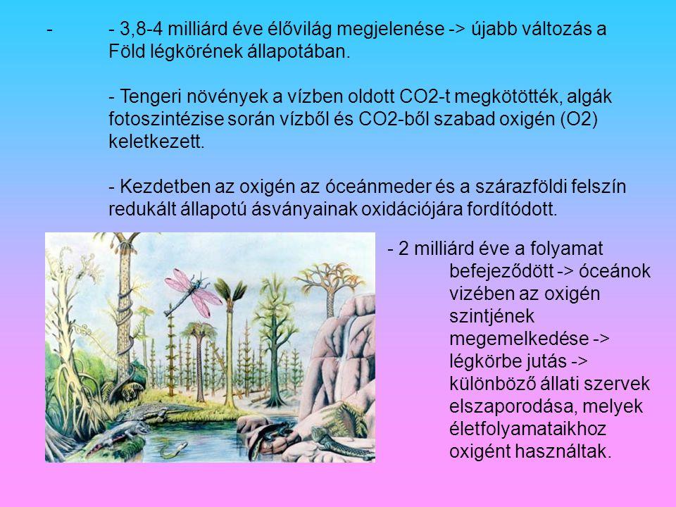 -- 3,8-4 milliárd éve élővilág megjelenése -> újabb változás a Föld légkörének állapotában. - Tengeri növények a vízben oldott CO2-t megkötötték, algá