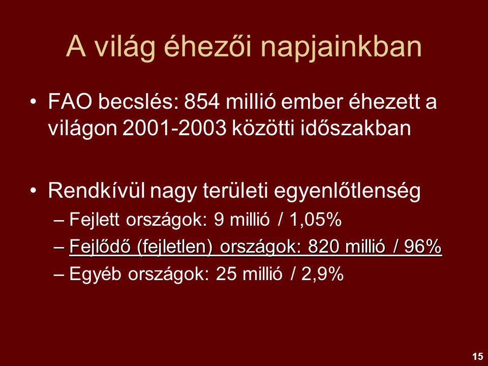 15 A világ éhezői napjainkban FAO becslés: 854 millió ember éhezett a világon 2001-2003 közötti időszakban Rendkívül nagy területi egyenlőtlenség –Fej