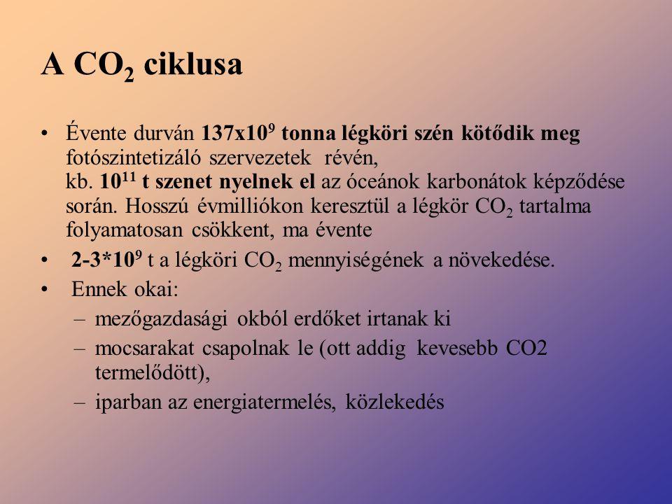 A CO 2 ciklusa Évente durván 137x10 9 tonna légköri szén kötődik meg fotószintetizáló szervezetek révén, kb. 10 11 t szenet nyelnek el az óceánok karb