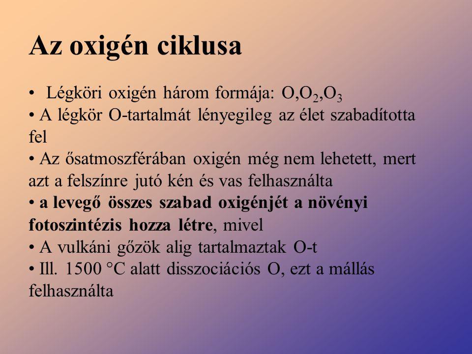 Az oxigén ciklusa Légköri oxigén három formája: O,O 2,O 3 A légkör O-tartalmát lényegileg az élet szabadította fel Az ősatmoszférában oxigén még nem l