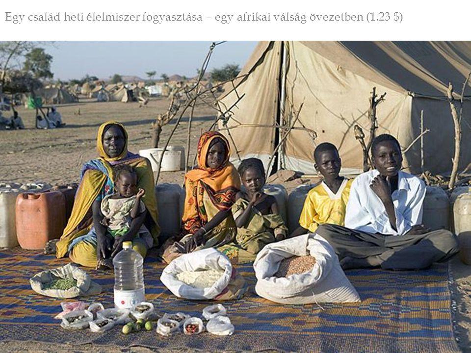 Egy család heti élelmiszer fogyasztása – egy afrikai válság övezetben (1.23 $)