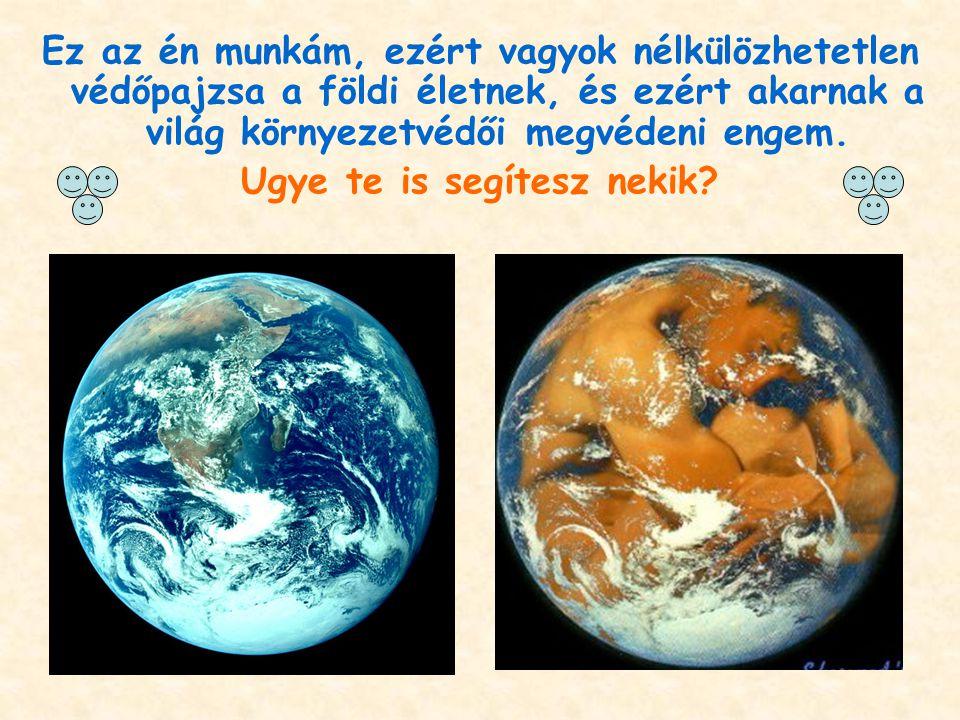 Ez az én munkám, ezért vagyok nélkülözhetetlen védőpajzsa a földi életnek, és ezért akarnak a világ környezetvédői megvédeni engem. Ugye te is segítes