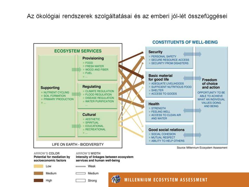 Mire jó a biodiverzitás? (minden szinten) Stabilitás Rugalmasság Hatékonyság Atmoszféra szabályozás Klíma szabályozás Hidrologiai szabályozás Anyagcik