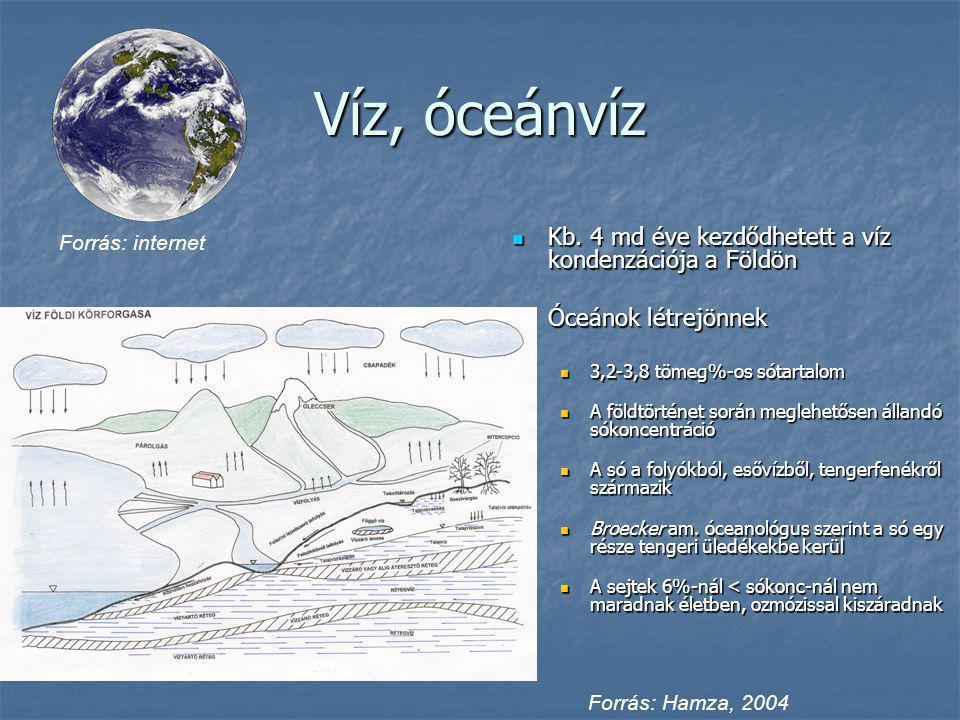 Víz, óceánvíz Kb. 4 md éve kezdődhetett a víz kondenzációja a Földön Kb. 4 md éve kezdődhetett a víz kondenzációja a Földön Óceánok létrejönnek Óceáno