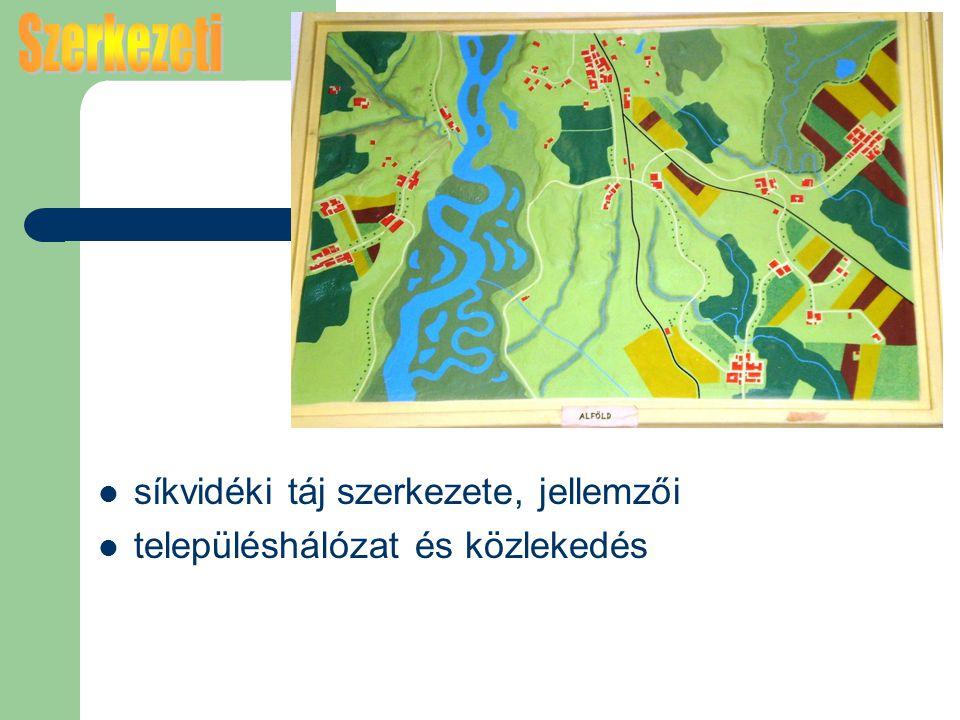 síkvidéki táj szerkezete, jellemzői településhálózat és közlekedés