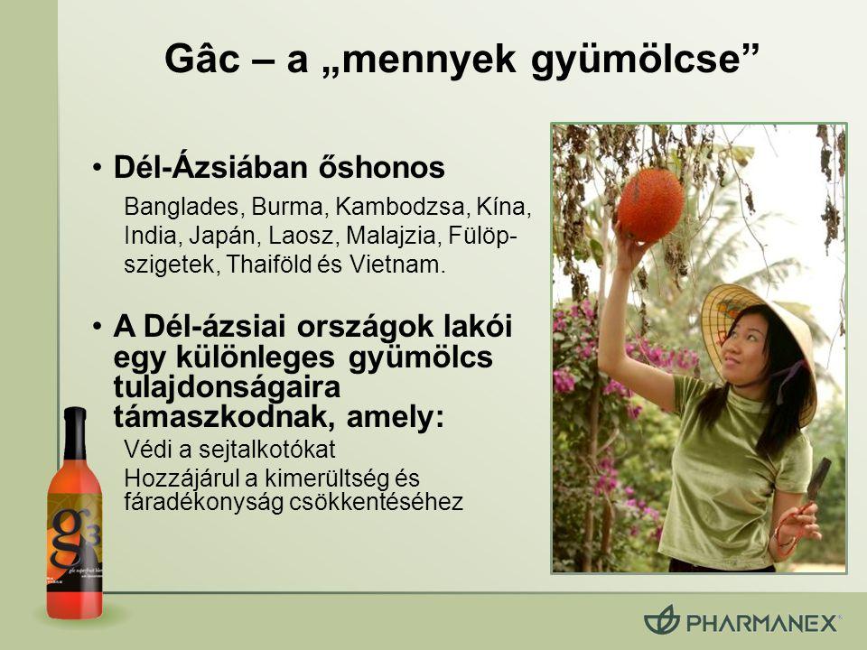 """Gâc – a """"mennyek gyümölcse Dél-Ázsiában őshonos Banglades, Burma, Kambodzsa, Kína, India, Japán, Laosz, Malajzia, Fülöp- szigetek, Thaiföld és Vietnam."""