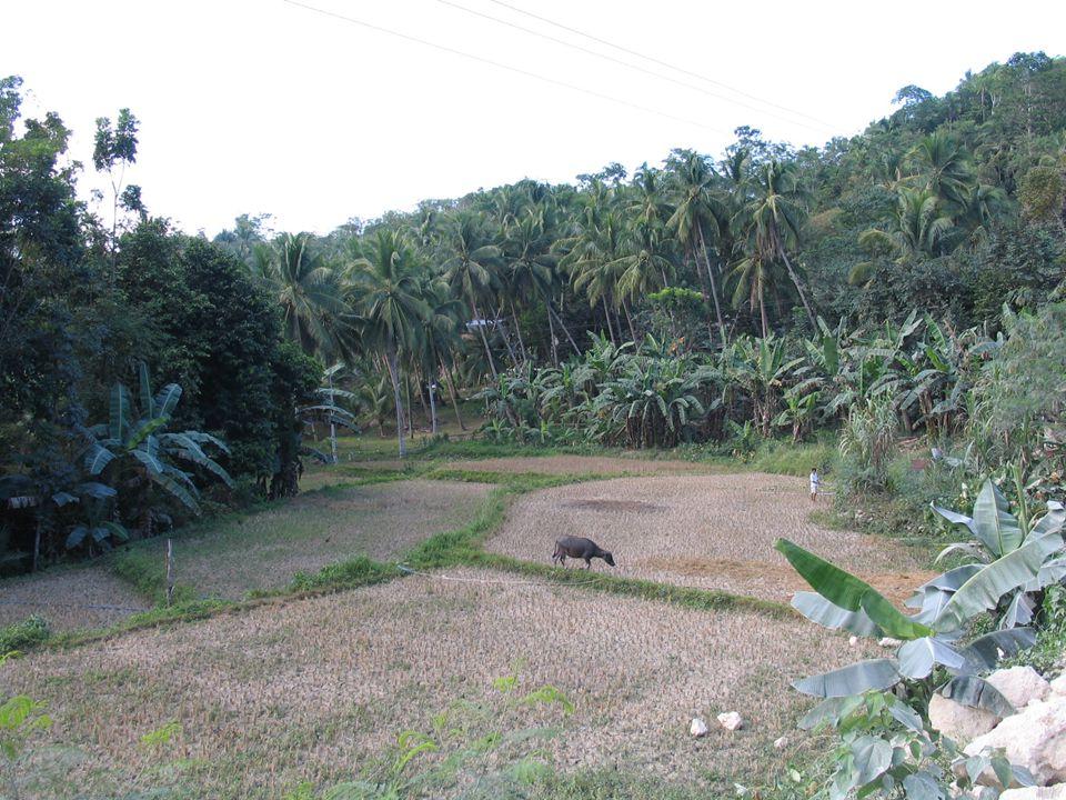 Földellátottság 1000 lakosra jutó mezőgazdasági terület nagysága (ha) 1.