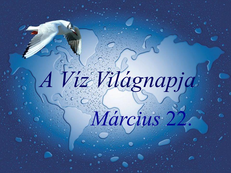 Az ENSZ 1994-ben nyilvánította március 22-ét a Víz Világnapjává, azóta világszerte ezen a napon ünneplik egyik legféltettebb kincsünket, a vizet.