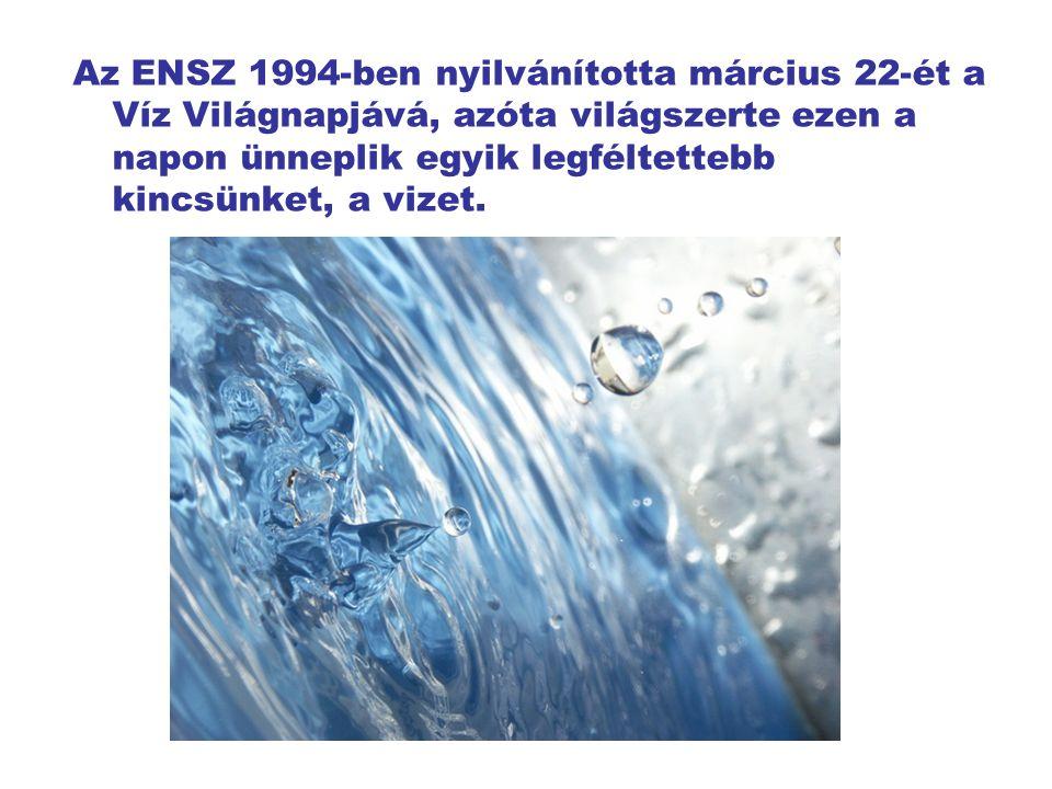 """A víz: maga az élet.Minden élőlény elsősorban vízzel """"táplálkozik ."""
