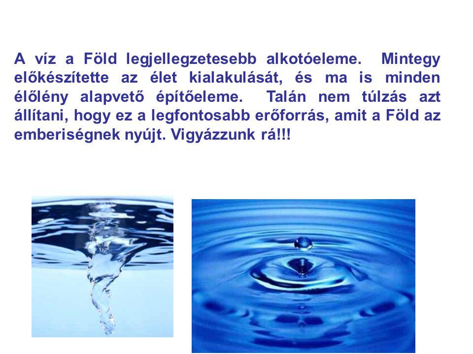 A víz a Föld legjellegzetesebb alkotóeleme. Mintegy előkészítette az élet kialakulását, és ma is minden élőlény alapvető építőeleme. Talán nem túlzás