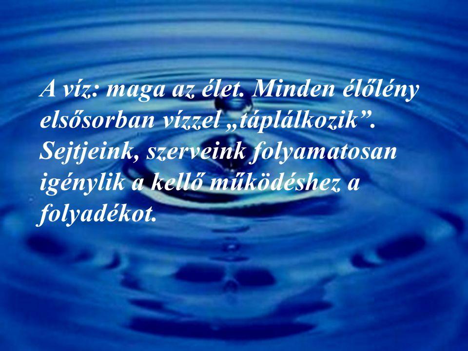A víz és az emberi szervezet Egy 75 kg felnőtt szervezet 50 l vizet tartalmaz.