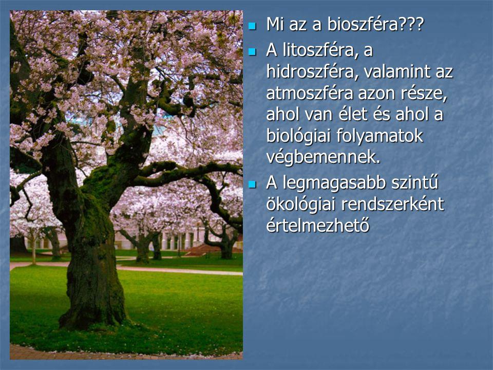 Mi az a bioszféra??? Mi az a bioszféra??? A litoszféra, a hidroszféra, valamint az atmoszféra azon része, ahol van élet és ahol a biológiai folyamatok