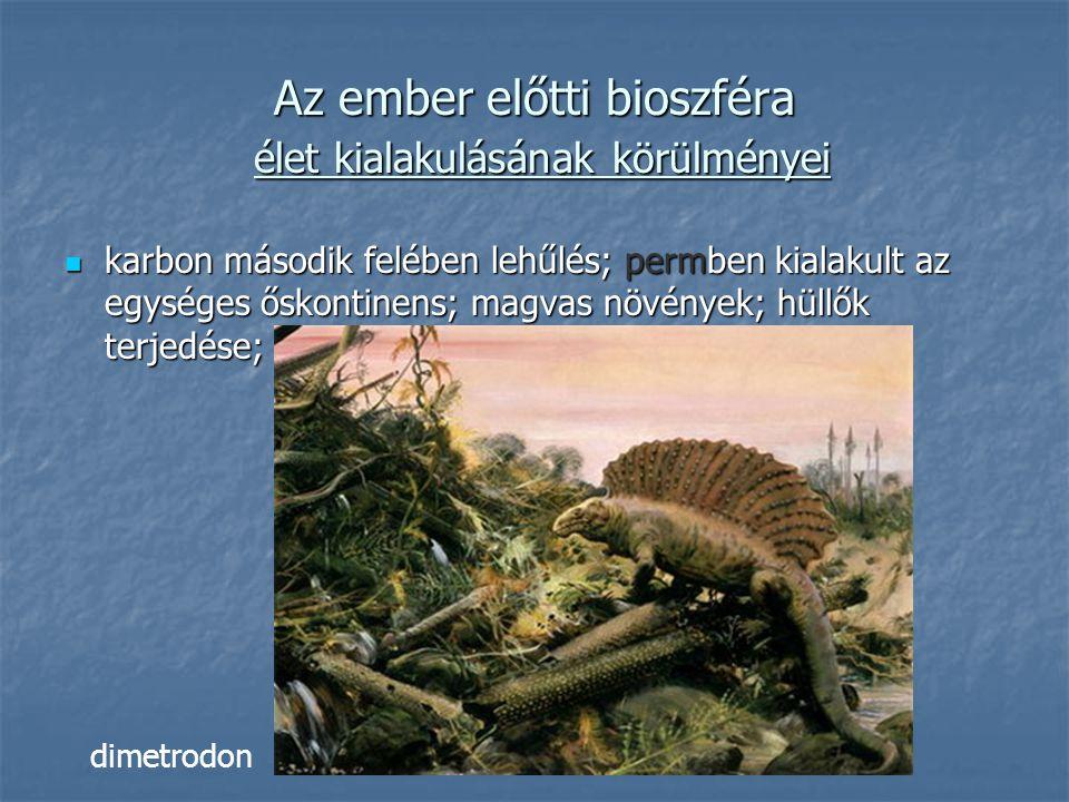 karbon második felében lehűlés; permben kialakult az egységes őskontinens; magvas növények; hüllők terjedése; karbon második felében lehűlés; permben kialakult az egységes őskontinens; magvas növények; hüllők terjedése; Az ember előtti bioszféra élet kialakulásának körülményei dimetrodon