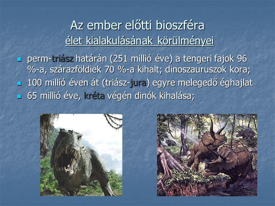 perm-triász határán (251 millió éve) a tengeri fajok 96 %-a, szárazföldiek 70 %-a kihalt; dinoszauruszok kora; perm-triász határán (251 millió éve) a