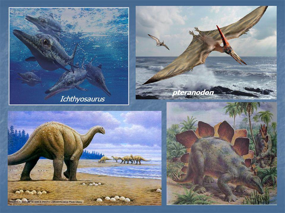 pteranodon Ichthyosaurus