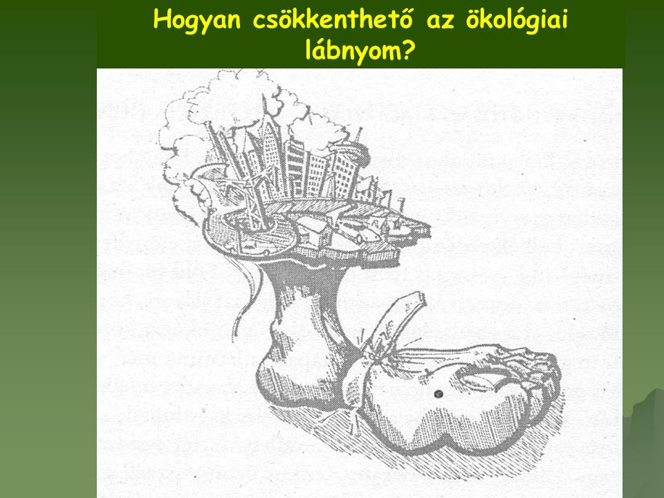 Hogyan csökkenthető az ökológiai lábnyom?