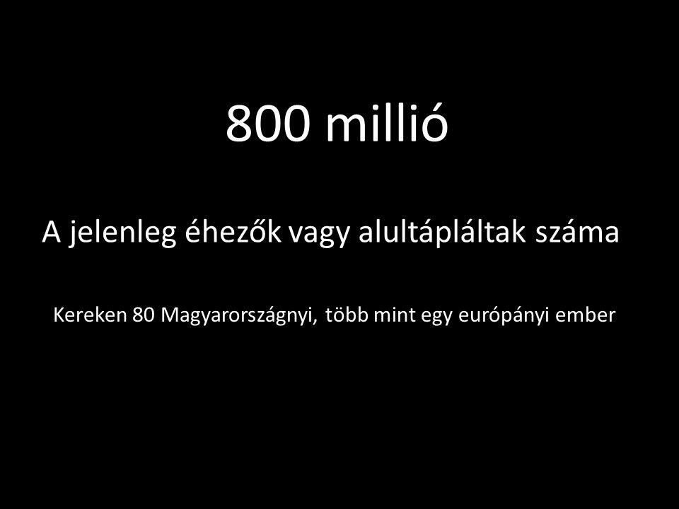 800 millió A jelenleg éhezőkvagy alultápláltak száma Kereken 80 Magyarországnyi, több mint egy európányi ember