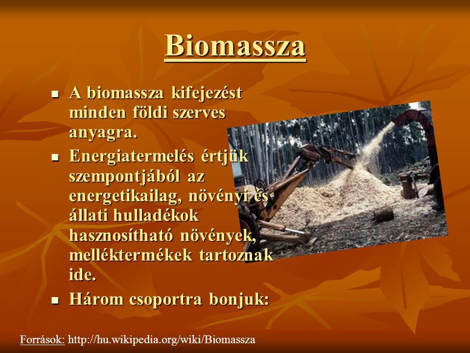 Biomassza A biomassza kifejezést minden földi szerves anyagra. A biomassza kifejezést minden földi szerves anyagra. Energiatermelés értjük szempontjáb